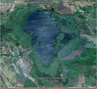Laguna jocotal