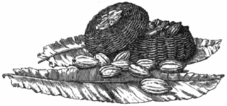 Fotg_cocoa_d088_baskets_of_cocoa_on_plantain_leaves